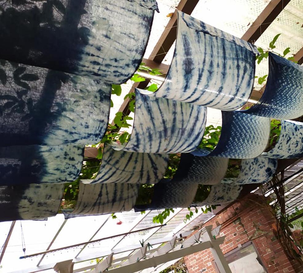藍染住房專案985x890-1